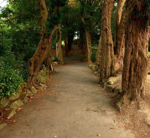 National Botanic Gardens: .