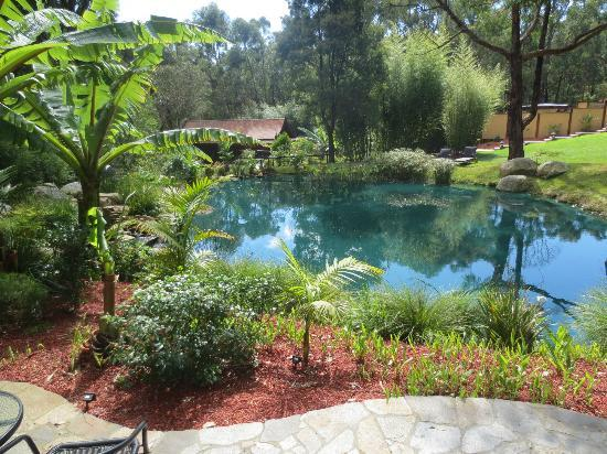 Japanese Mountain Retreat Mineral Springs & Spa: Japanese Garden and pond