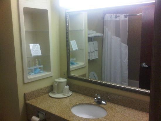 Holiday Inn Express Hotel & Suites Biloxi- Ocean Springs : bathroom