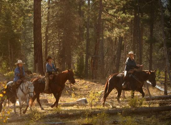 Wilderness Trails Ranch: A ride through the forest