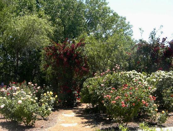 Rio Grande Botanic Garden Picture Of Abq Biopark Botanic Garden Albuquerque Tripadvisor