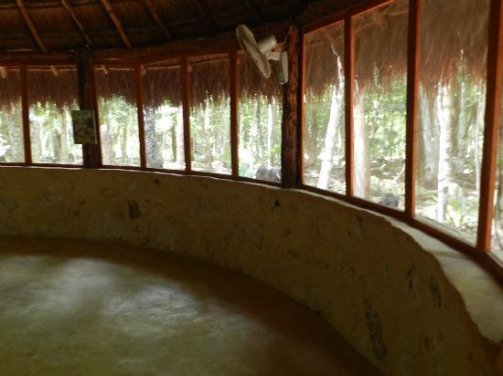 Organic Yoga Mexico 이미지