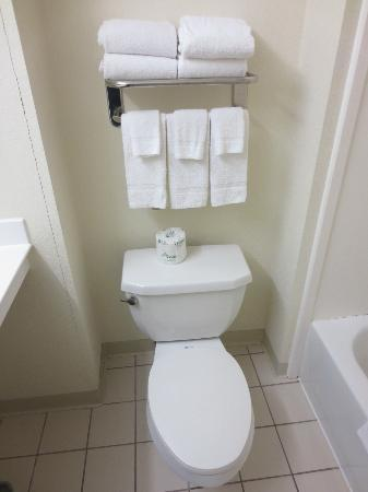 Extended Stay America - St. Louis - Westport - Central: Well stocked bathroom
