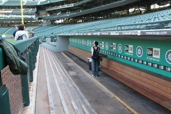 The Mariners' dugout, Safeco Field - Picture of Safeco ...