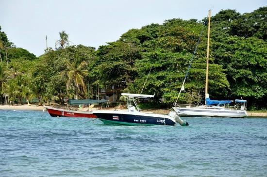 Puerto Viejo Beach: PUERTO VIDEJO DE TALAMANCA, BOATS