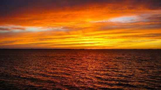 Coastal Cantina : Sunset over the sound.