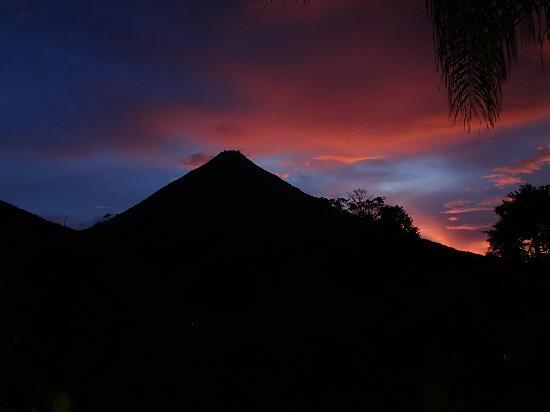 Ecoterra Costa Rica: view from hotel room