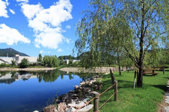 Nature Environment Park