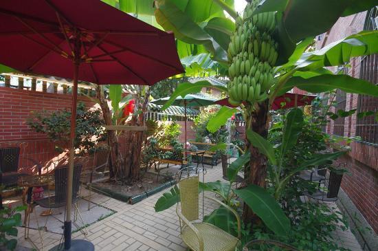 Remy's Garden Hotel : garden view