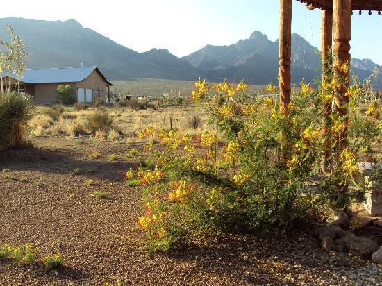 DreamCatcher Inn de Las Cruces: Dream Catcher Inn