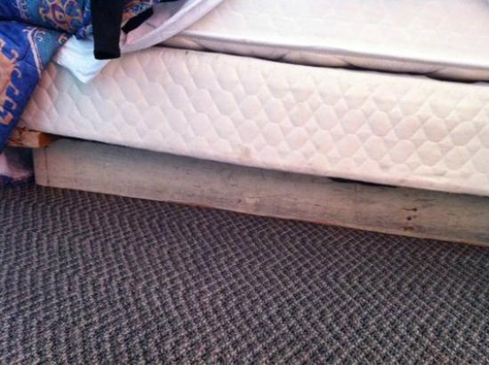 Sea Garden Motel: boards used to hold up the bed. let's call it rustic?