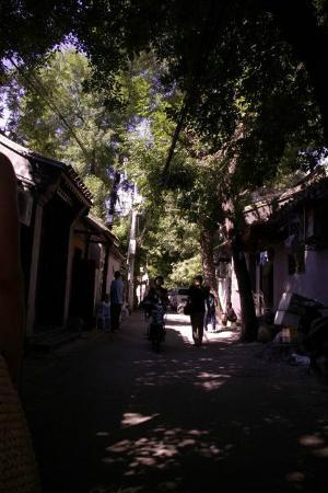 Hotel Cote Cour Beijing: The Hutong lanes are an experience