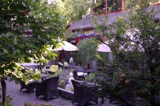 Hotel Cote Cour Beijing: the Courtyard is so quite