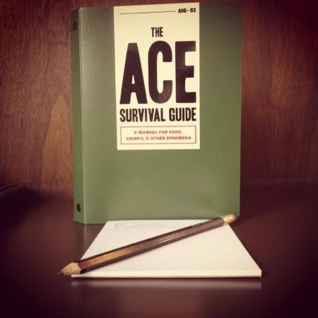 Ace Hotel: Ace Survival Guide