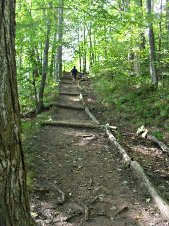 Alliston, Canada: Bruce Trail