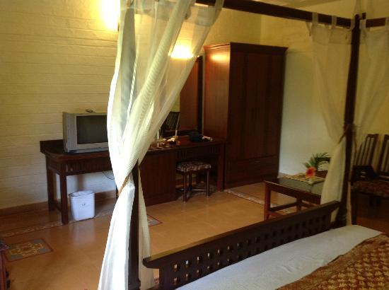 Hoysala Village Resort: Thats the interior of the room