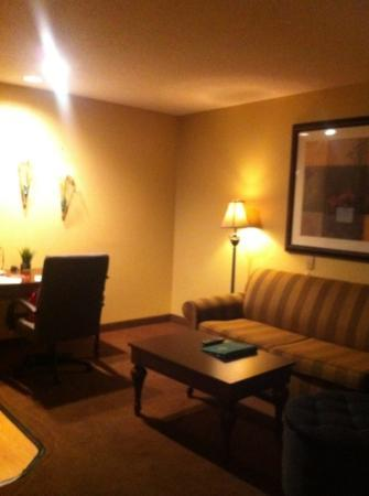 Homewood Suites by Hilton Chicago Schaumburg : seating area.