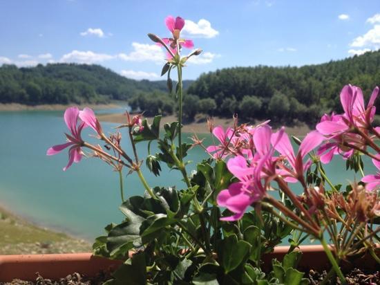 Amatrice, Italy: da una finestra del buon agriturismo sul lago