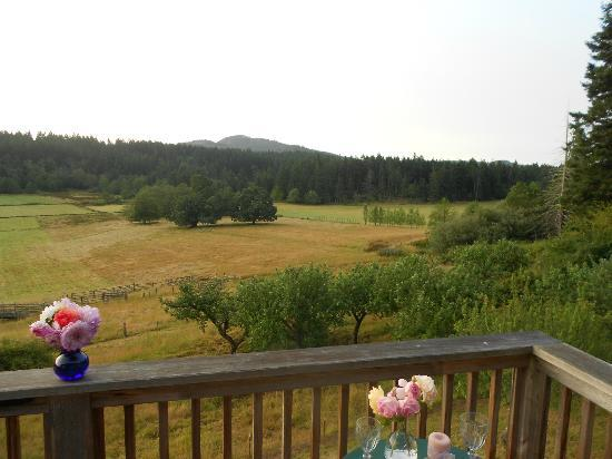 Turtleback Farm Inn: View from Orchard House room porch.