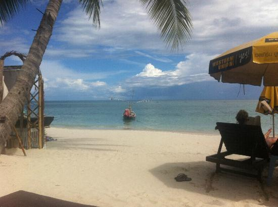 Al's Resort: plage de l'hôtel
