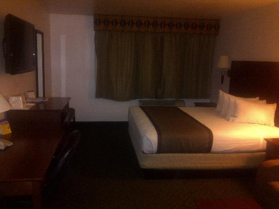 BEST WESTERN Parker Inn: King Room
