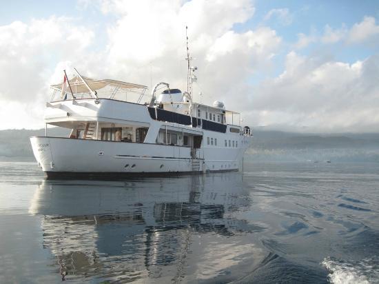 Wakatobi Dive Resort: Pelagian