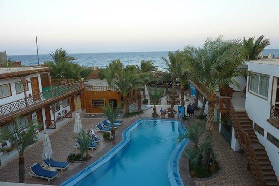 Acacia Dahab Hotel: Piscine