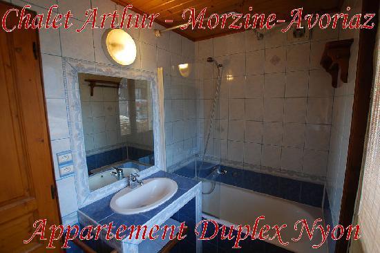 Chalet Arthur : Appartement Nyon, bains.