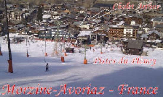 Chalet Arthur : Vue des pistes en hiver