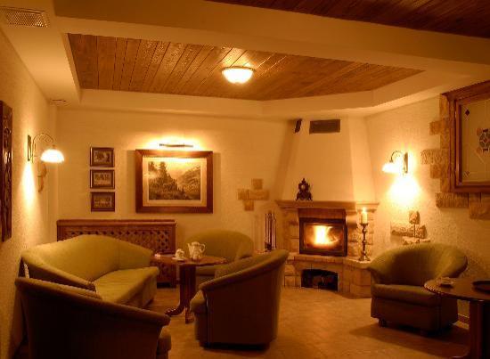 Hotel Nowa Ski: Sala kominkowa