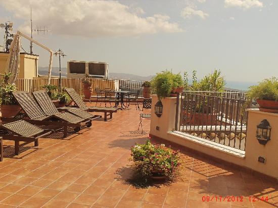 Die Katzen - Picture of B&B Terrazze di Montelusa, Agrigento ...