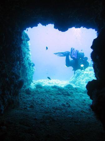 Naxos by, Hellas: A nice reefdive