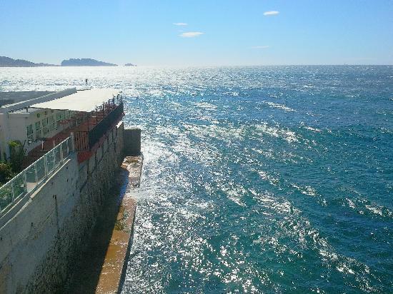 Dauphins Corniche : Journée de mistral et ciel azuréen...