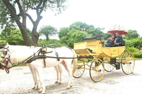 Taj Falaknuma Palace: Nizam's horse carraige entry ride