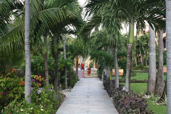 Nautibeach Condos: Hotel gardens