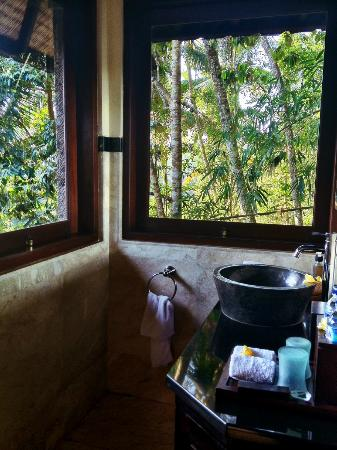 Bidadari Private Villas & Retreat : Shower room with a view