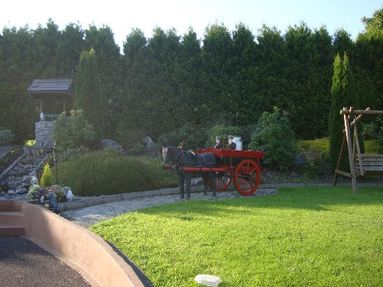 River Valley Farmhouse: Le jardin