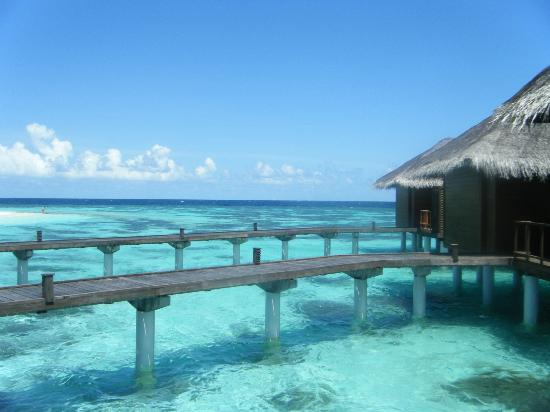 Kuramathi Island Resort: Honeymoon Trip Villas