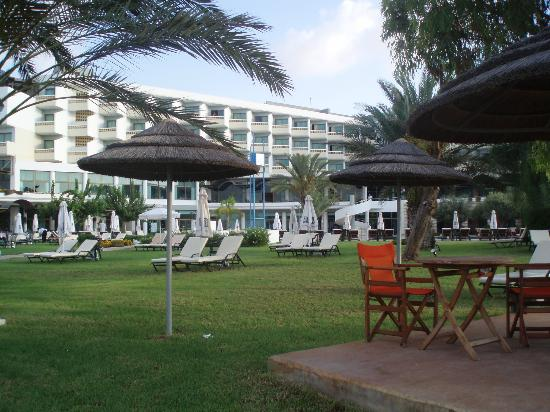 Constantinou Bros Athena Royal Beach Hotel: view of lawn