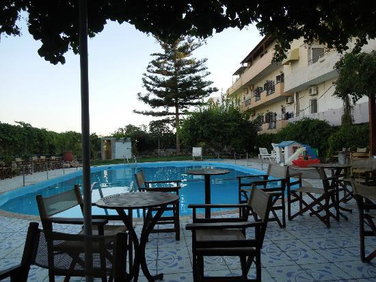 Roxani Hotel: pool and bar