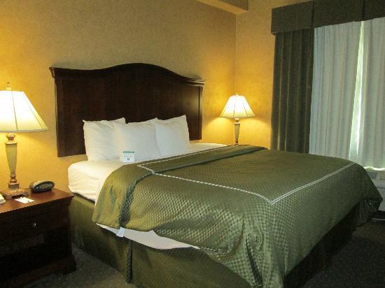 Comfort Suites Alamo/Riverwalk: King size bed