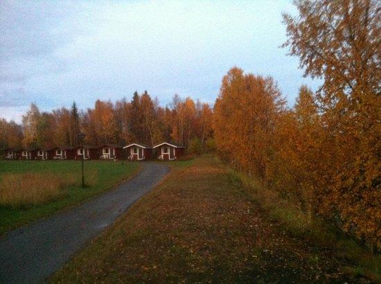Naverniemi Holiday Center: Cottage