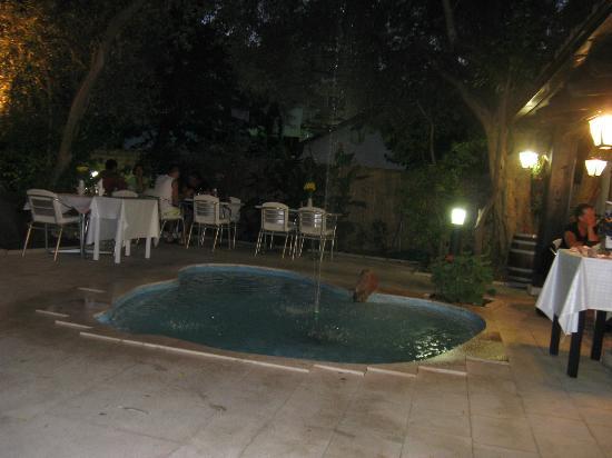 Hotel Oliva: столики у освежающего фонтанчика на открытой площадке ресторана