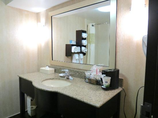 Hampton Inn Niagara Falls: Bathroom