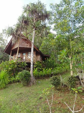 Aliiibamou Resorts Carolines: cottage