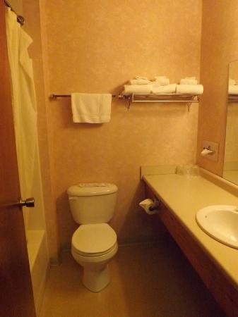 """Carriage House Motor Inn: Bathroom had the 'Far Away look"""" the farther away the cleaner it looked."""