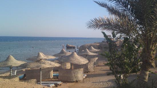 Sea Club Resort - Sharm el Sheikh: beach with lovely umbrellas