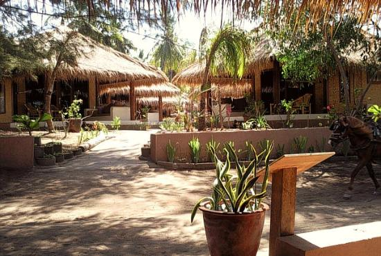 The Beach Club Hotel Gili Air: path to the bungalows
