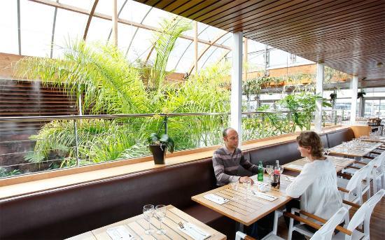 ambiance tropicale photo de le cafe de l aquarium la rochelle tripadvisor