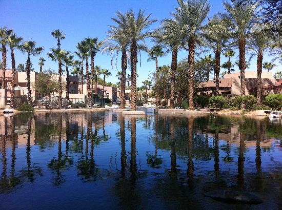 Hyatt Regency Indian Wells Resort & Spa: Garden Area View